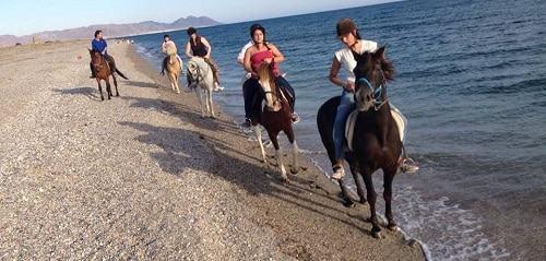 Recomendaciones para hacer excursiones a caballo en familia