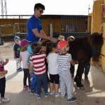 Ponys en Almería