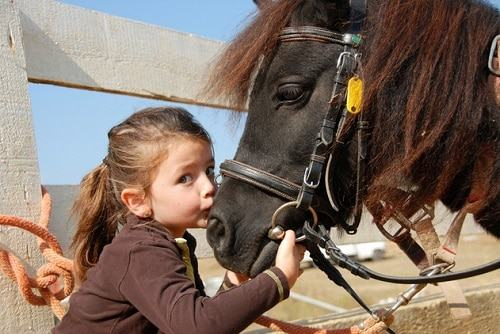 paseos a caballo con niños