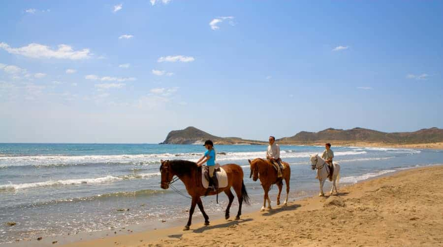 equpamiento adecuado para montar a caballo en rutas