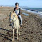 caballos-ruta